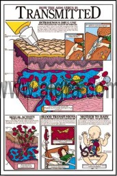 How the Aids Virus is Transmitted Grades 5-9 Poster