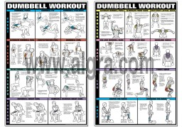 dumbbell workout poster set by bruce algra