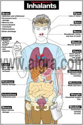 Harmful Effects of Inhalants Poster