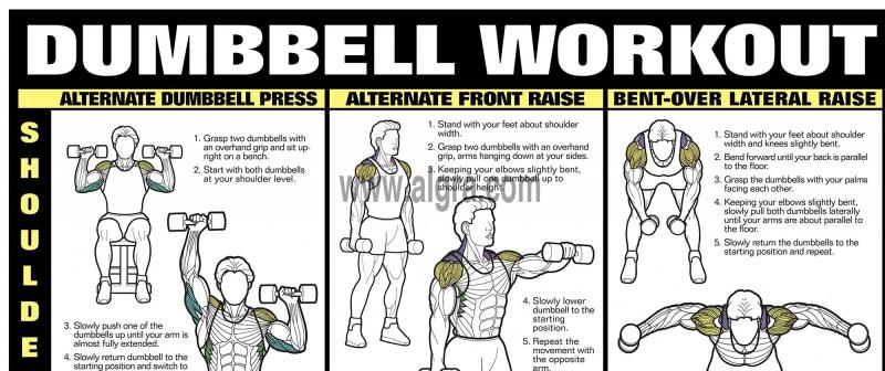 Dumbbell Shoulder, Back & Leg Workout Poster | by Bruce Algra