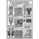 How the Aids Virus is Transmitted Study Sheet