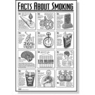 Smoking Facts Study Sheets