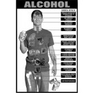 Alcohol Education Study Sheet