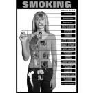 moking Education Study Sheets