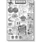 Harmful Effects of Heroin Study Sheets