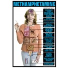 Methamphetamine Effects Transparency