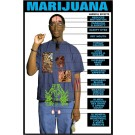Effects of Marijuana Poster