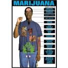 Marijuana Effects Transparency