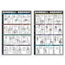 Dumbbell Set Workout Poster