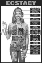 Ecstasy Education Study Sheets