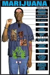 Effects of Marijuana Poster