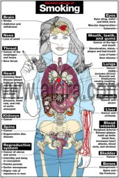 Harmful Effects of Smoking Poster