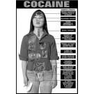 Cocaine Education Study Sheets