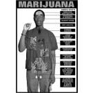 Marijuana Education Study Sheets