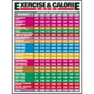 Exercise & Calorie Guide Poster