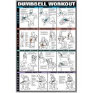 Dumbbell Chest & Arm Workout Poster