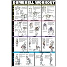 Dumbbell Shoulder, Back, & Leg Workout Poster
