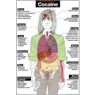 Cocaine Poster