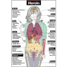 Harmful Effects of Heroin Poster
